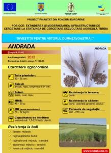 Andrada1