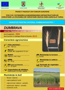 Dumbrava1