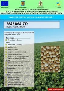 Malina1