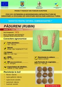 Padureni1