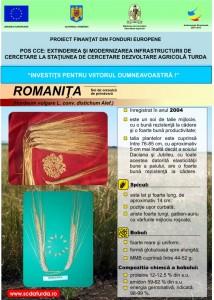 Romanita1