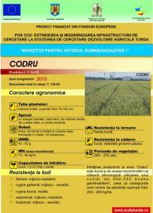 Codru1
