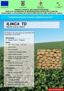 Ilinca1
